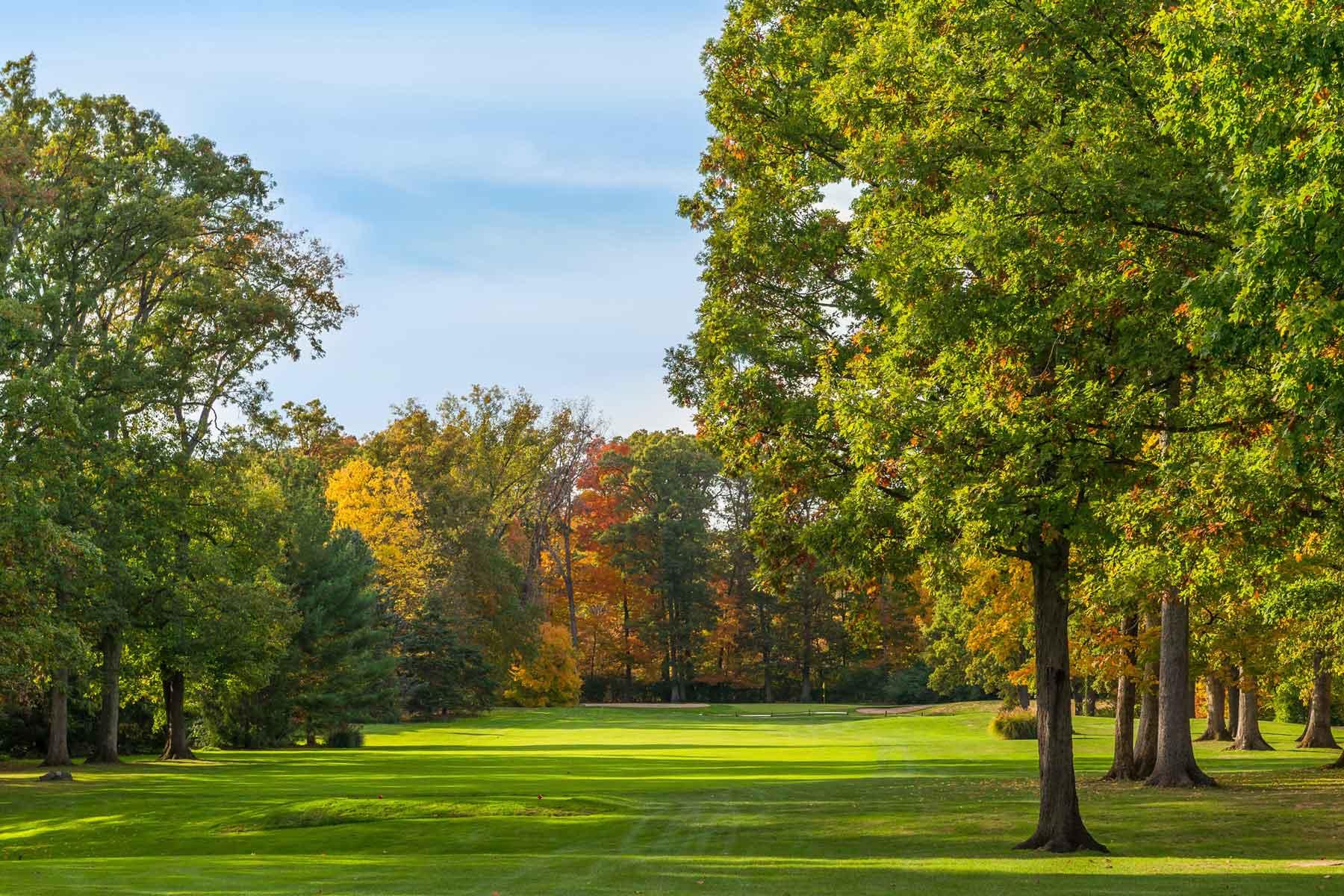 golf hole tee view